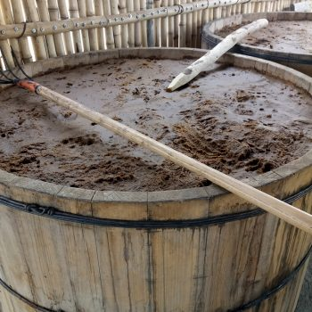Fermentation of the cooked agave